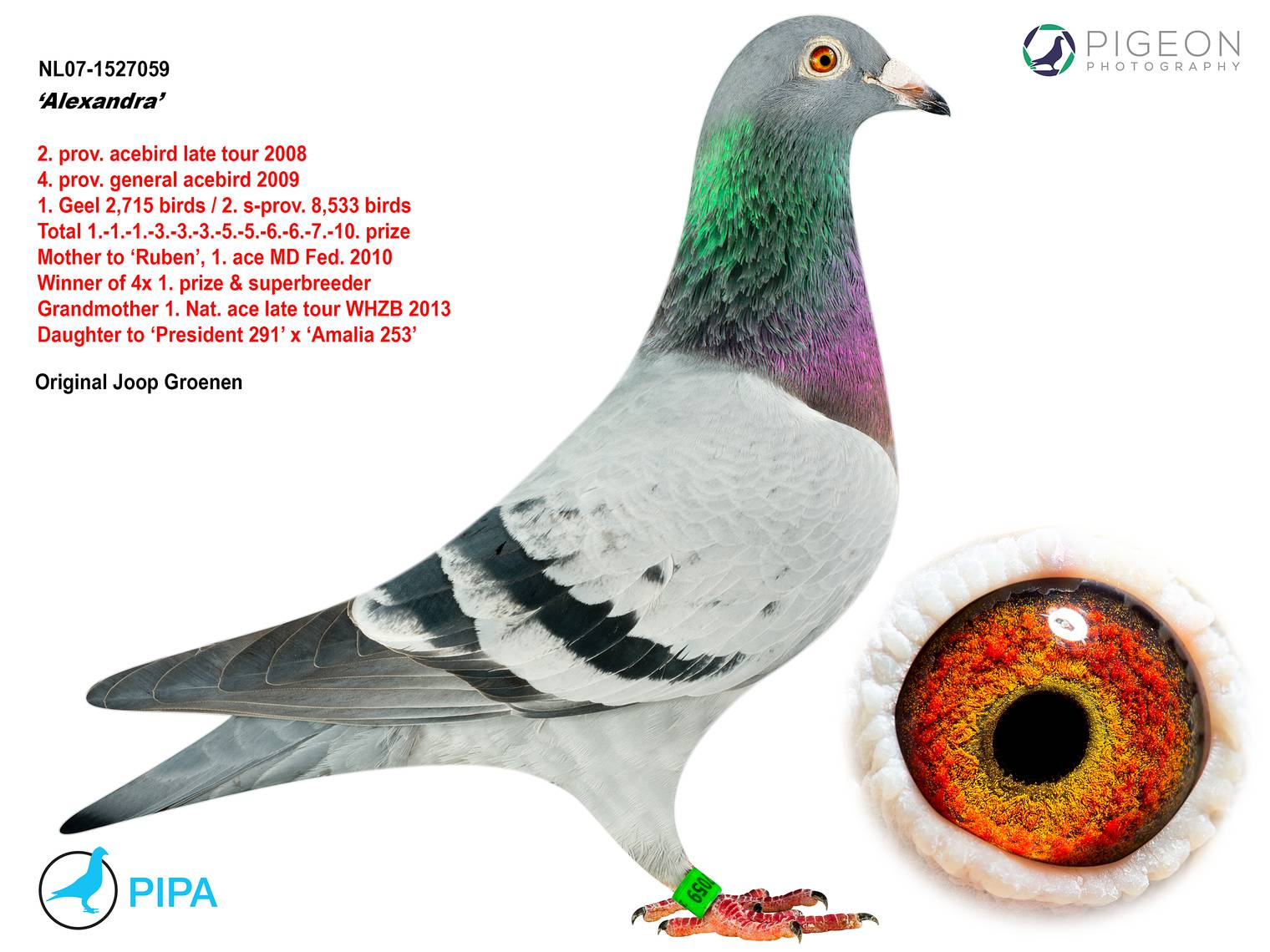 NL07-1527059