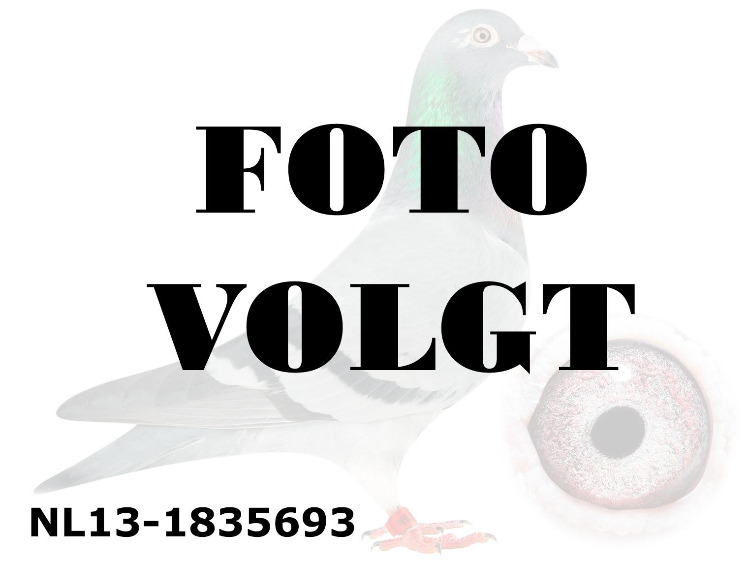 NL13-1835693_foto_volgt