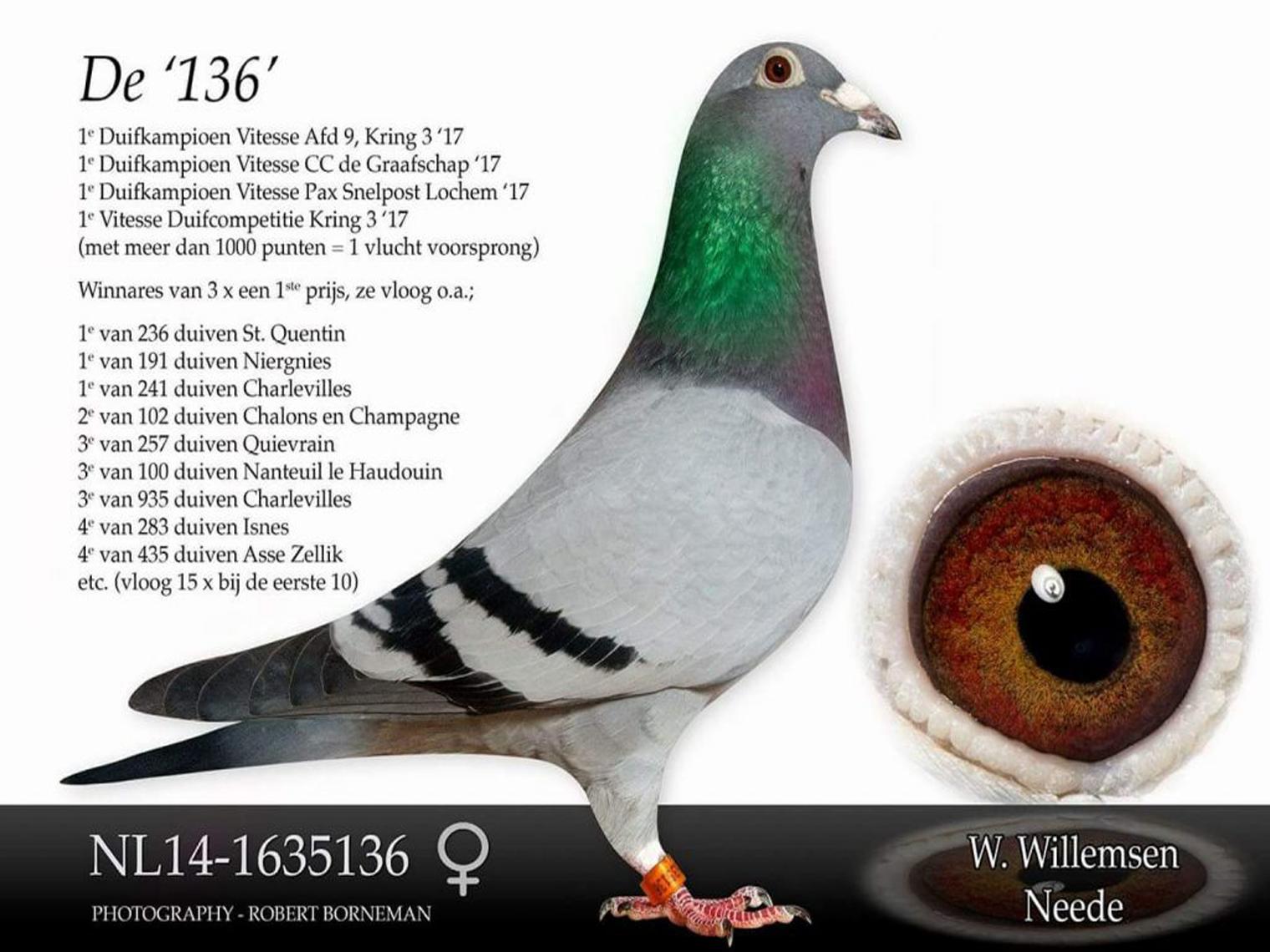 NL14-1635136_1520_1140