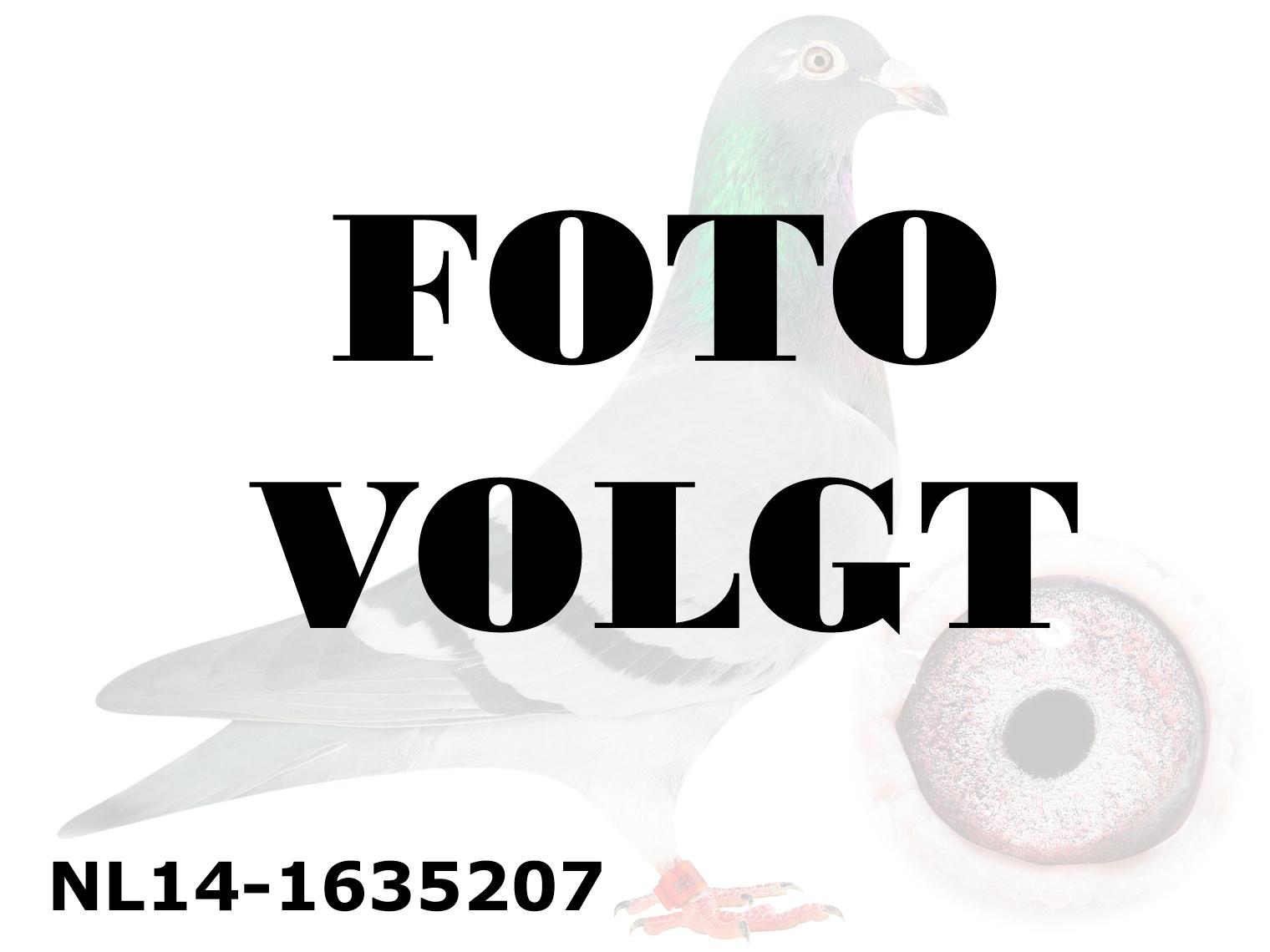NL14-1635207_foto_volgt