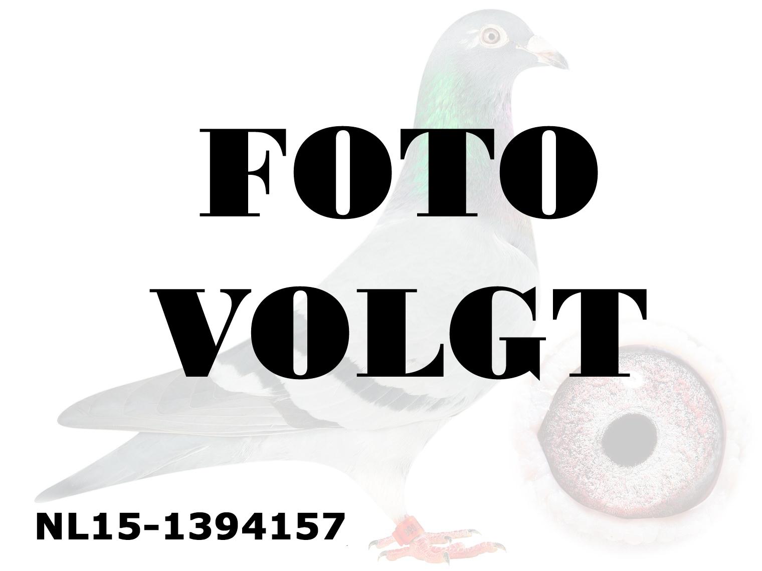 NL15-1394157_foto_volgt
