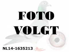 NL14-1635213_foto_volgt
